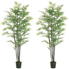 TWO Pre-potted 7' Artificial Black Bamboo Tree X7 W/1440 Lvs. In Plastic Pot * Visit the image link more details.