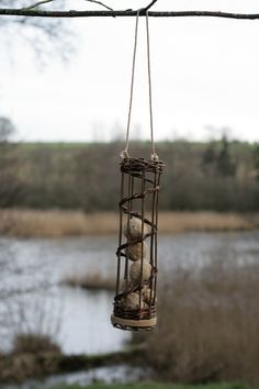 Råhaugegård Pil - Galleri, Pileflet til fugle, Fuglefoderhus, Fuglefoderhus i rangleflet, Fuglefoderhus med ophæng, Fuglefoderhus på træskiv...