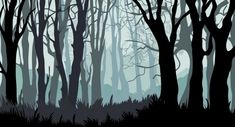 Tree Shadow Art Dark Forest New Ideas 2d Game Background, Forest Background, Background Drawing, Vector Background, Background Patterns, Shadow Illustration, Forest Illustration, Forest Cartoon, Family Tree Poster