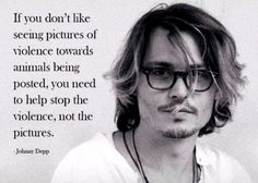 Johnny depp-you don't like seeing pictures of violence towards animals being posted, you need to help stop the violence, not the pictures. Vegan Facts, Vegan Memes, Vegan Quotes, Vegetarian Quotes, Johnny Depp Frases, Johny Depp, Why Vegan, Vegan Raw, Vegan Vegetarian
