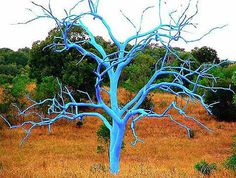 Instead of removing dead trees, paint them...any colors you desire!  Art at its finest!