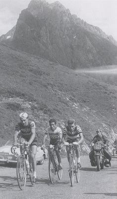 Raymond Poulidor, Federico Bahamontes & Jacques Anquetil