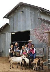 Reason #99 of 101 Reasons to Exit #HWY101: Learn how to milk a goat at Happy Acres Family Farm. Download your complete guide to Discover 101 Reasons to Exit Highway 101 with Martin Resorts here: http://revinate.me/rXA. #PasoRoblesInn
