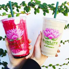 #Repost @charlottedel – Check out the #OffTheMenu app for other smoothies off the @sunlifeorganics secret menu and other secret menus all across LA  #OTM #secretmenu #california