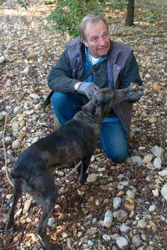 Et non, il n'y a pas de truffe noire que dans le Périgord... La preuve avec Eric Jaumard aux pieds du Mont Ventoux au cœur de la Provence. Le Vaucluse est en effet aujourd'hui le premier producteur de France.