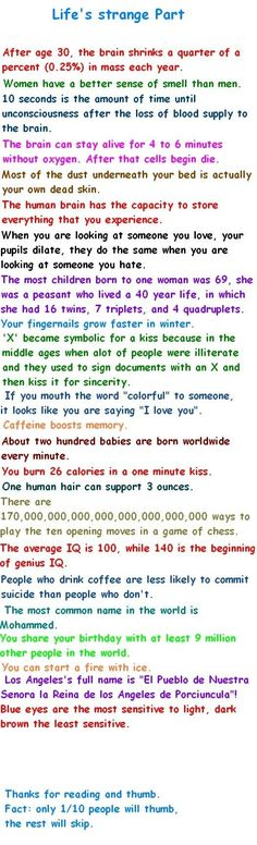 funny verticals - life facts by consuelo