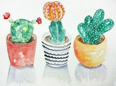 Day 68/#the100daysproject Day 24 #cbdrawadaychallenge Cacti . . #100daysofwatercolorsbymariacd #ifdraw100days #creativebug #cbdrawaday #watercolor #watercolordrawing #watercolorpainting #watercolorillustration #illustration #illustrationpractice #drawingaday #drawingchallenge #drawing #painting #paintingaday #cactus #cacti #succulents