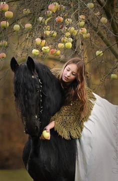 - girl giving horse an apple