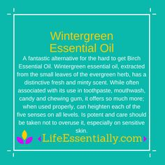 #wintergreen #essentialoil #lifeessentially #ameo