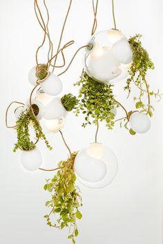 Bocci 38 Series Hanging Pendants - Style Estate -