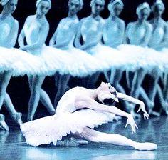 Swan Lake performed by the Royal Ballet at the Royal Opera House, London 2011 Ballerina Dancing, Ballet Dancers, Ballet Shoes, Ballerinas, Ballet Bar, Ballet Feet, Ballet Girls, Royal Ballet, Zoella