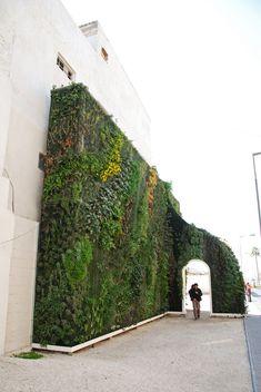 Muharraq Green Gate, two months after installation, Bahrain, Feb 2012
