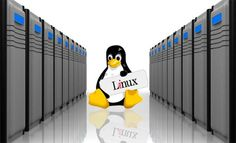 Whether you want to host a website, blog, forum or social networking site, #LinuxHosting is the best platform to offer reliability and performance to consumers. To get this ideal solution for your personal and business websites, get in touch with us.