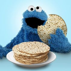 Happy Passover! | A Little Bit Funny