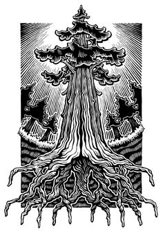 Tree Drawings with Fancy Roots Redwood Tattoo, Roots Drawing, Woodcut Tattoo, Roots Tattoo, Beard Art, Abstract Drawings, Tree Drawings, Tree Illustration, Tree Art