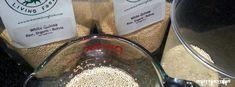 Gluten free rejuvelac recipe