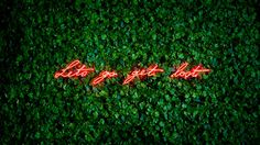 NEON INSTALLATIONS by OLIVIA STEELE …ABOUT LOVE   Styllure