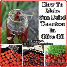 The Homestead Survival | How To Make Sun Dried Tomatoes In Olive Oil | http://thehomesteadsurvival.com