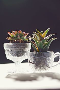 vintage crystal goblets as planters