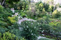 Japanese Tea Garden, Balboa park, San diego