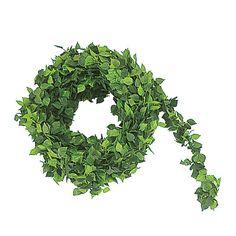 ミニローズリーフガーランド Herbs, Herb, Medicinal Plants