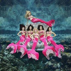 The Weeki Wachee Mermaids