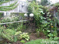 Cheap garden ideas - always use good soil