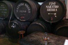 En Bodegas El Maestro Sierra probando el espectacular Oloroso Extra Viejo 1/7 VORS.