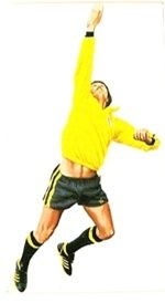England goalkeeper Ray Clemence in 1976.