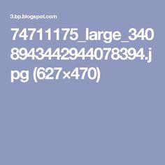 74711175_large_3408943442944078394.jpg (627×470)