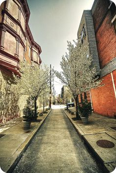 Streets of Philadelphia #2 by FedeSK8, via Flickr