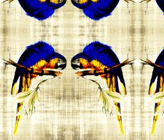 Blue parrot  fabric by nascustomwallcoverings on Spoonflower - custom fabric