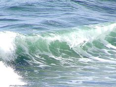 Wave - Photos and Pictures - Public Domain - Royalty Free