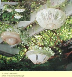 Glass planters from old ceiling light fixtures. Would Make Cool Bird Feeders Too!
