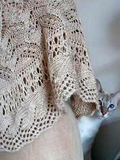Chat et châle