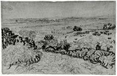 The Plain of La Crau by Vincent Van Gogh Drawing, Reed pen Arles: May - 20-26, 1888