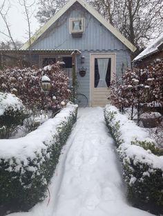 Afgelopen winter..
