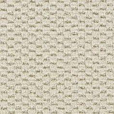 Model home carpet