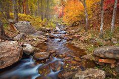 Payson, AZ Horton Creek