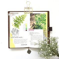 117/366: Yesterday's super simple spread about the newest addition to my plant collection: the Maidenhair Fern