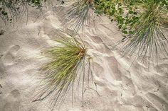 Las huellas de las sandalias http://www.encuentos.com/historias-cortas/las-huellas-de-las-sandalias/