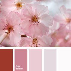 burgundy, candy color, color combination, color matching, color palette, dark red, hot pink, light pink, lilac color, pale lilac, Red Color Palettes, shades of lilac, shades of pink, White Color Palettes.