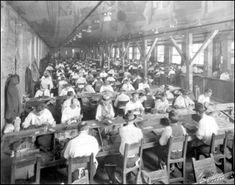 Interior view of a cigar factory: Tampa, Florida (19--)