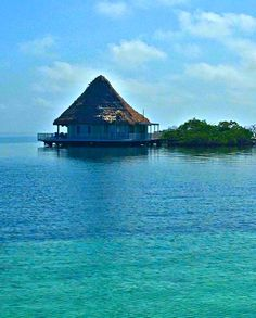 Coco Plum Beach Resort Is An Only Belize All Inclusive Offering Vacation Packages Tours Contact Us To Book A Private Island