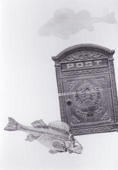 ASAEL ARISTA FISH POST