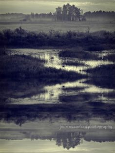 Reflection photograph, blue, water print, home decor, Fine Art Photograph by jude McConkey