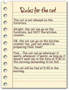 Rules for the cat.. ♥ too funny and so true