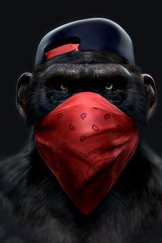 Monkey Wallpaper, Cartoon Wallpaper, Gorilla Wallpaper, Graffiti Wallpaper, Arte Assassins Creed, Monkey Art, Kunst Poster, Creation Art, Plakat Design