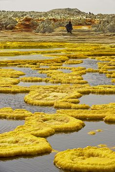 ETHIOPIA – Danakil depression – Dallol by Michel and Anne-Marie DETAY