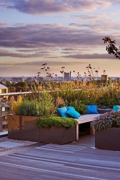 Large roof garden in Hampstead 3 Charlotte Rowe copyright Clive Nichols Roof Terrace Design, Rooftop Design, Patio Design, House Design, Diy Pergola, Pergola Plans, Pergola Kits, Pergola Ideas, Herb Garden Design